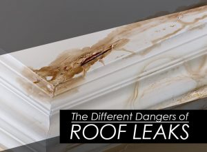 The Different Dangers of Roof Leaks