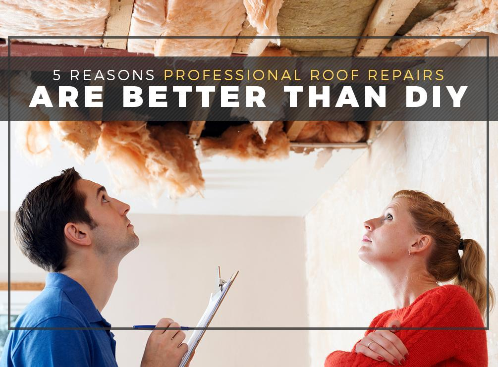 5 Reasons Professional Roof Repairs Are Better Than DIY
