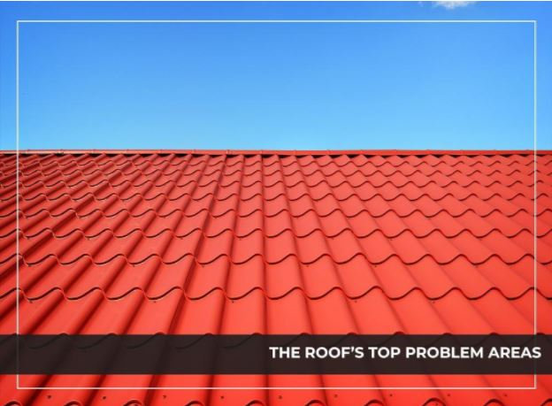 The Roof's Top Problem Areas